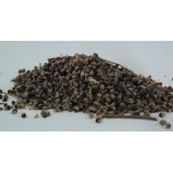 Herb Agnus Cactus Seeds 4g