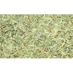 Herb Lemongrass 10g