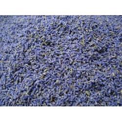 Herb Lavender 10g