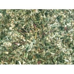 Herb Mugwort 8g