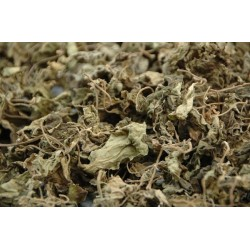 Herb Patchouli Leaves 10g