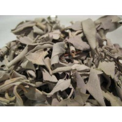 Herb White Sage Leaves 6g