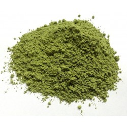Herb Wheat Grass Powder 10g