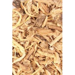 Herb Angelica  10g