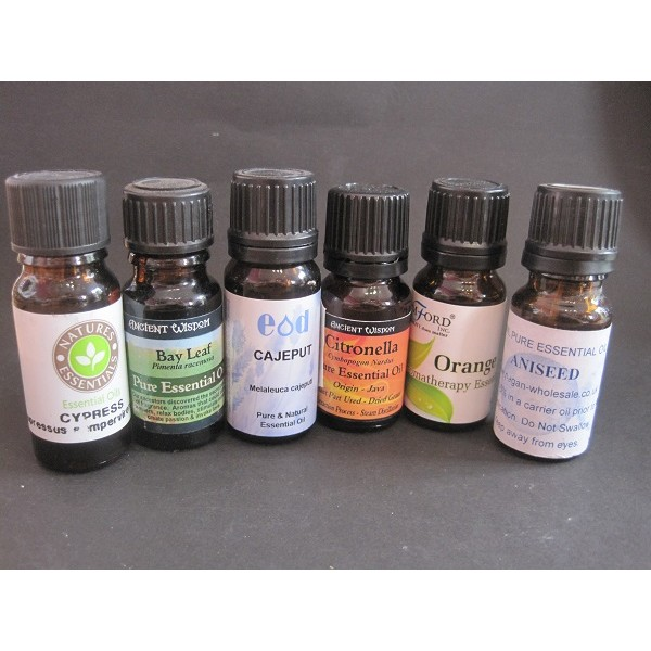 Chamomile Dilute Essential Oil