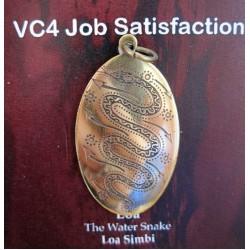 Voodoo Charm Job Satisfaction
